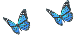 Hingamine logo